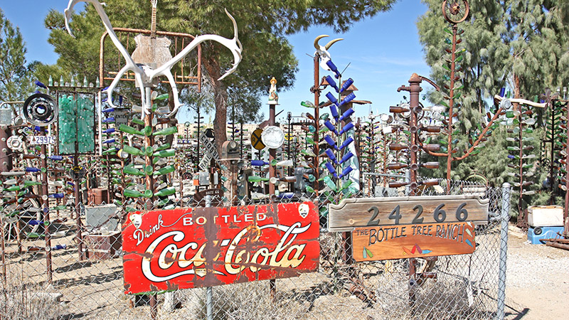 The Bottle Tree Farm - a leftover idea from Hula Ville